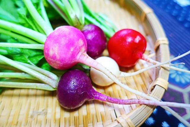 白、赤、ピンク、紫、薄桃紫の彩り豊かなラディッシュ。